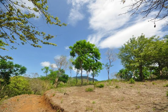 Mombacho Lodge: One of the trail areas surrounding the lodge