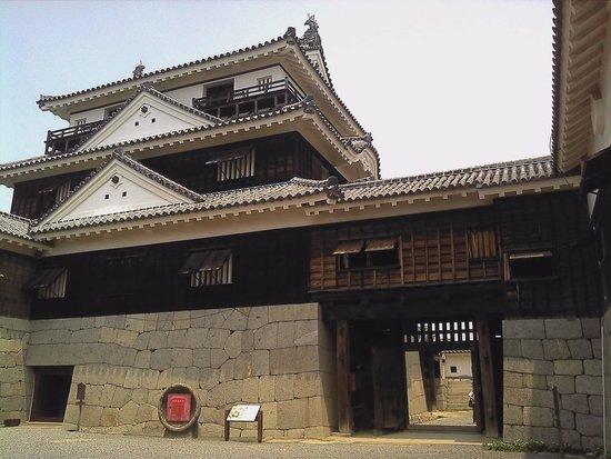 Matsuyama Castle: 天守閣