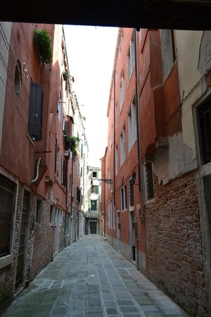 Hotel Casa Petrarca: The 'street' leading down to Casa Petrarca