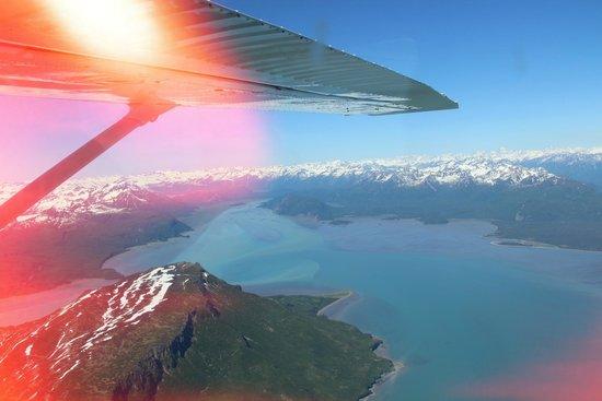 Bear Camp : flight