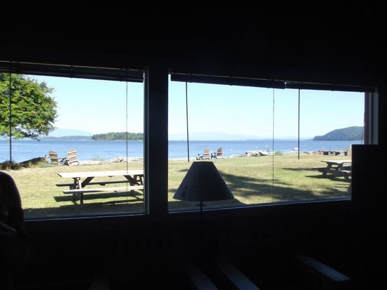 Guemes Island Resort: View out Cabin 6 windows