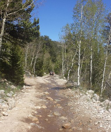 Backbone Adventures : Loved the trails.