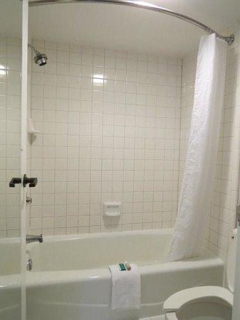 GuestHouse Inn & Suites Nashville/Music Valley: Bathroom