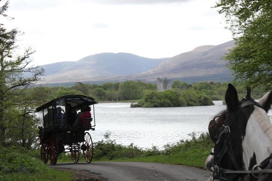 Algret House Bed and Breakfast: Jaunting Car in Killarney National Park