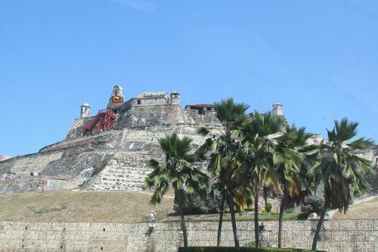 Château de San Felipe de Barajas : palmera y tropico