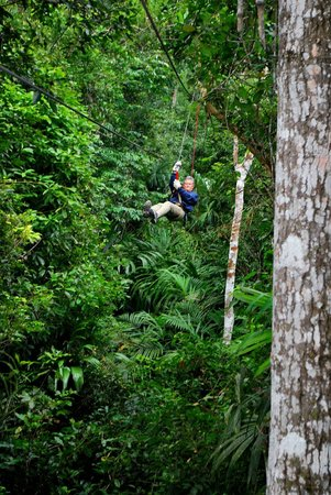 Canopy Tours Tikal: Flying through the jungle