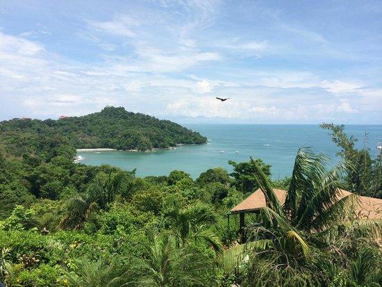 Tulemar Resort: Amazing View!