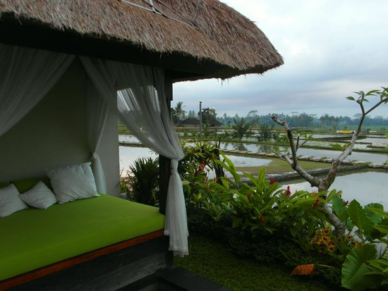 Alam Puisi Villa : View of the private pool area
