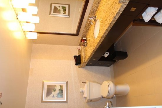 Washington Marriott at Metro Center: Baño