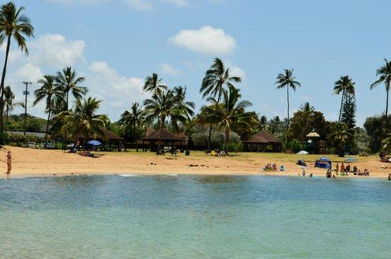 Poipu Beach Park: The beach area