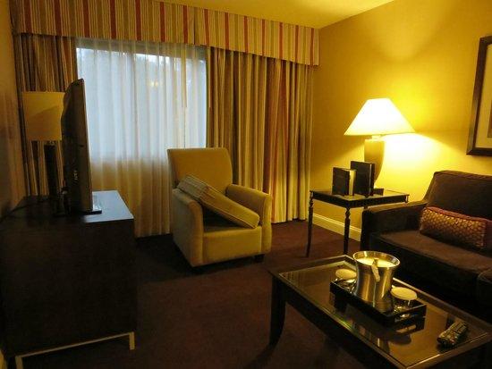 Hilton Brentwood/Nashville Suites : Living Room