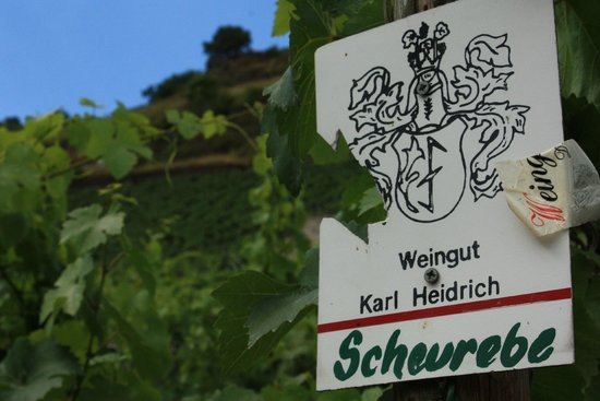 Weingut Karl Heidrich: Sign for the winery in the vineyards