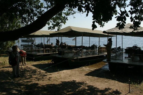 Chobe Game Lodge: The roomy and well designed boats that take you out most days