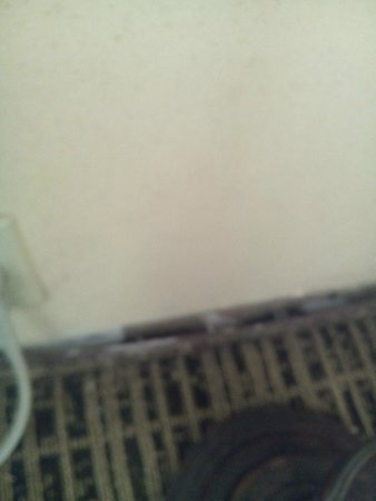 Baymont Inn & Suites Grenada: more carpet pulled from the walls in room