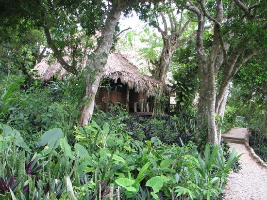 Lamanai Outpost Lodge: The Cabins and Grounds