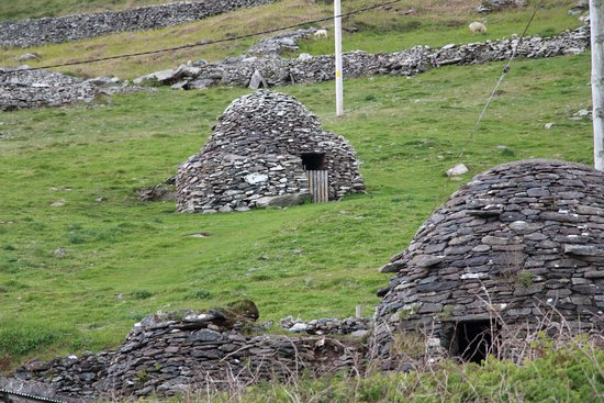 The Dingle Peninsula : Bee Hives we saw for FREE from side of road vs paying €6