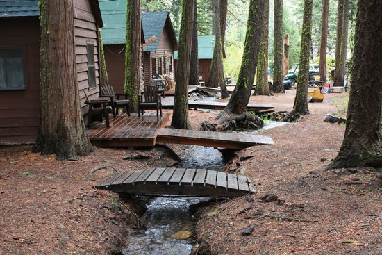 Cromberg, Californië: Little creek outside many of the cabins