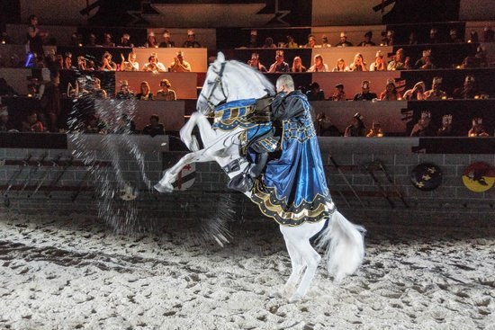 Medieval Times Dinner & Tournament: Cavaleiros