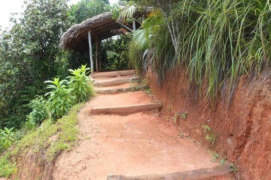Vallee de Mai Nature Reserve : Shelter Area on Top