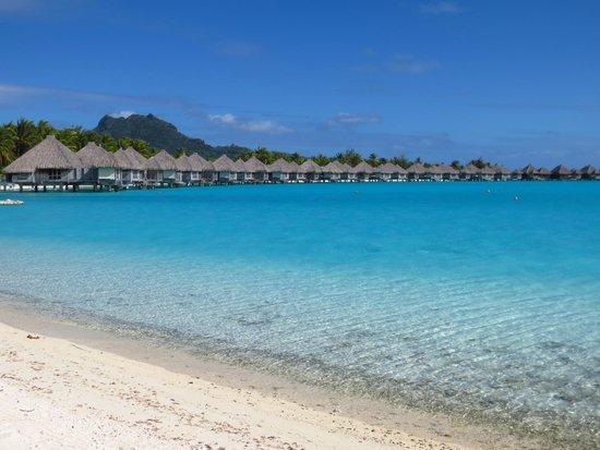 The St. Regis Bora Bora Resort : beach