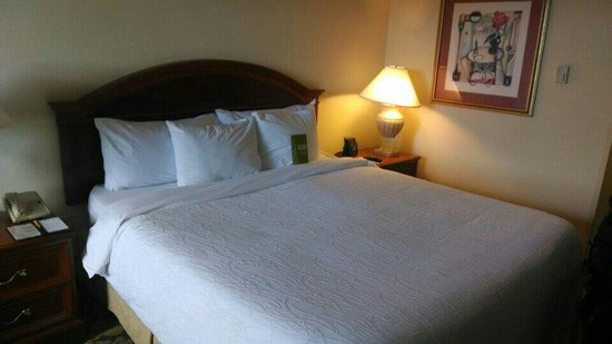 Homewood Suites by Hilton Chesapeake-Greenbrier: King room