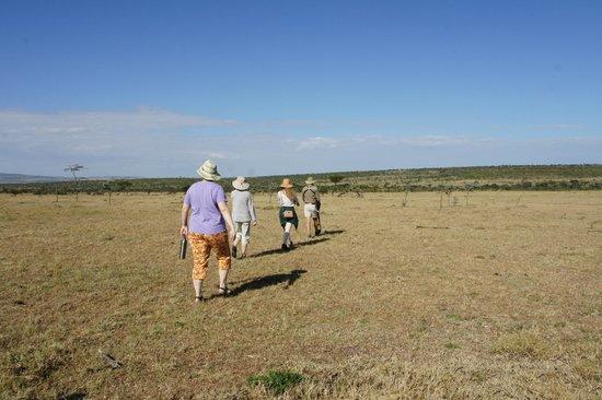 Naboisho Camp, Asilia Africa: Walking Safari