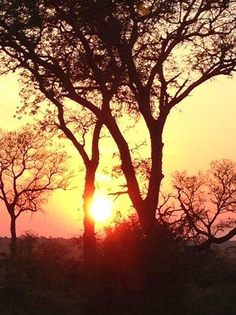 Tintswalo Safari Lodge: South African Sundowner