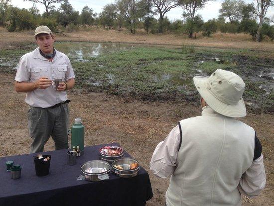 Tintswalo Safari Lodge: Coffee anyone?  In bush at sun-up