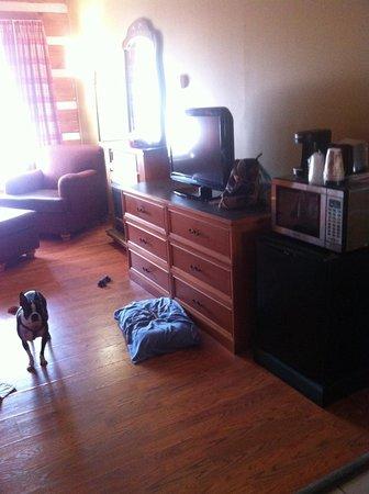 Timbers Lodge: Room 108
