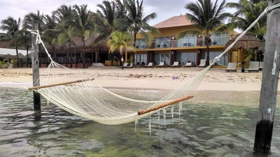 Sunscape Sabor Cozumel : Beach bed