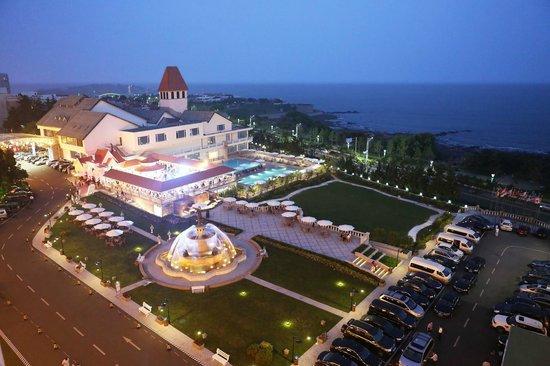 Seaview Garden Hotel: garden