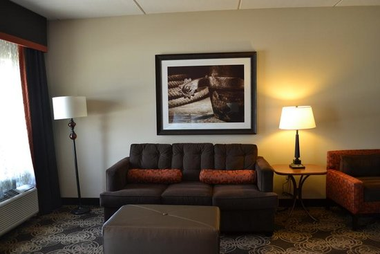Hampton Inn and Suites - Dallas Allen: Livingroom area