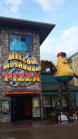 Mellow Mushroom at the Island in Pigeon Forge : ENTRANCE