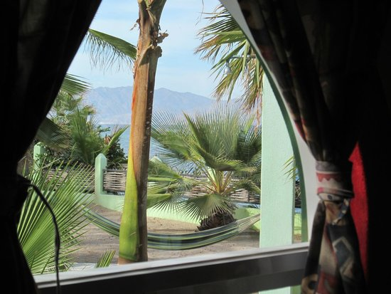 Casa Verde: View out room window