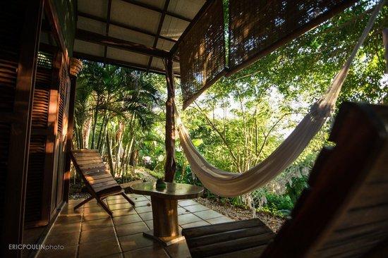 Funky Monkey Lodge: bungalow
