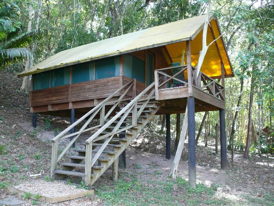 The Lodge at Chaa Creek : Cabin at Chaa Creek's Macal River Camp