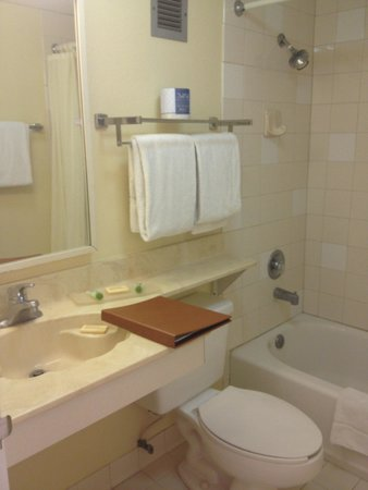 Floridian Hotel : Bath of standard king size bedroom-- very clean
