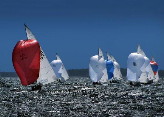 Sailing Excursions Adirondack II : Sailboats called Etchells in Newport harbor.