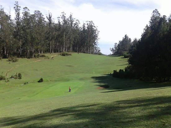 Ootacamund Gymkhana Golf Club: A challenging golf course on the slopes of the Nilgiris.