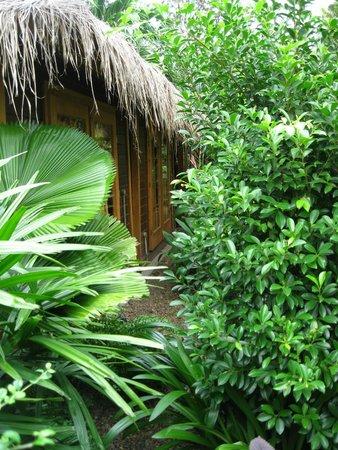 The Villa Paradiso : Spa Cabin in our Garden