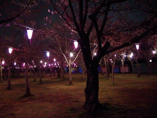 Mukaiyama Park
