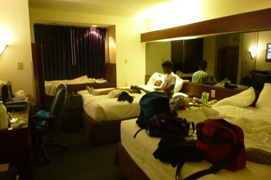 Microtel Inn & Suites by Wyndham Atlanta Airport: room on the 2nd floor, cleaner