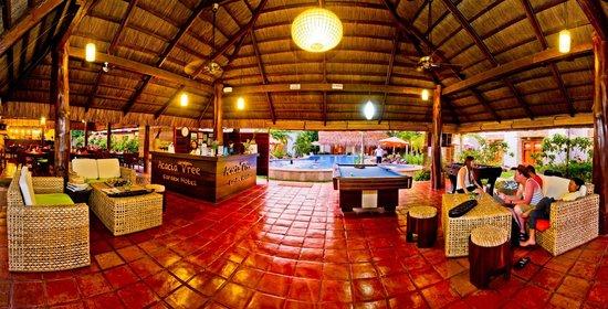 Acacia Tree Garden Hotel 31 38 UPDATED 2018 Prices