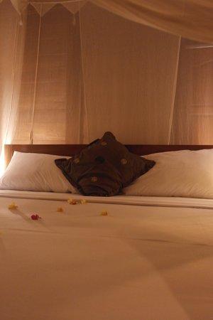 DD Ubud Villa : Bed