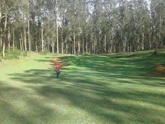 Ootacamund Gymkhana Golf Club: A quiet serene atmosphere all around.