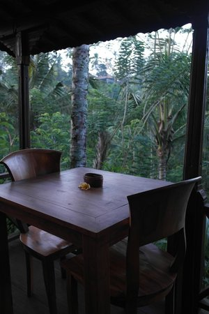 DD Ubud Villa: View from Room