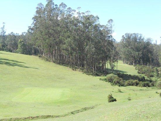 Ootacamund Gymkhana Golf Club: converging fairways.