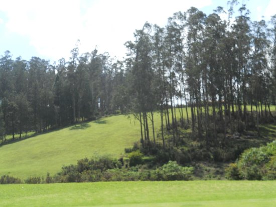 Ootacamund Gymkhana Golf Club: What club will you choose for this shot?