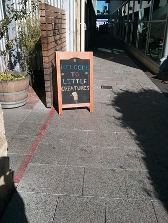 Little Creatures: Signage