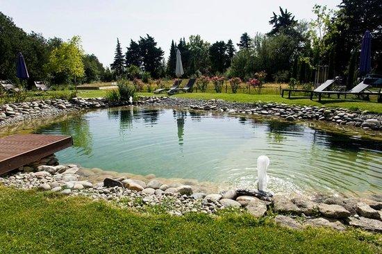 Couleur Lavande : jardin et piscine naturelle